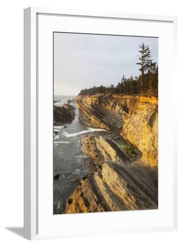 Sandstone Cliffs and Coastline, Shore Acres State Park, Oregon, USA-Jamie & Judy Wild-Framed Art Print