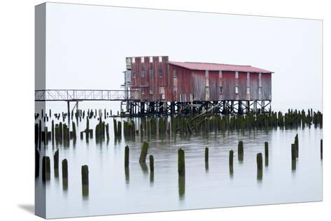 Old Fishing Cannery on the Columbia River, Astoria, Oregon, USA-Jamie & Judy Wild-Stretched Canvas Print