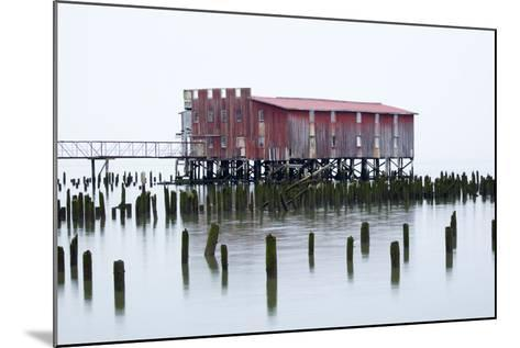 Old Fishing Cannery on the Columbia River, Astoria, Oregon, USA-Jamie & Judy Wild-Mounted Photographic Print