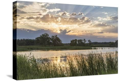 Sunrise over Backwater of the Milk River Near Glasgow, Montana, USA-Chuck Haney-Stretched Canvas Print
