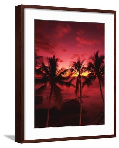 View Palm Trees on Beach, Big Islands, Kona, Hawaii, USA-Stuart Westmorland-Framed Art Print