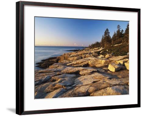 Mt Desert Island, View of Rocks with Forest, Acadia National Park, Maine, USA-Adam Jones-Framed Art Print