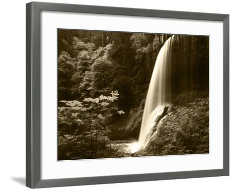 View of Middle North Falls, Silver Falls State Park, Oregon, USA-Adam Jones-Framed Art Print