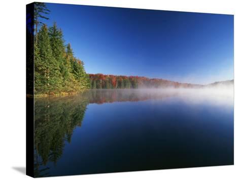 Autumn Trees, Adams Reservoir, Woodford State Park, Vermont, USA-Adam Jones-Stretched Canvas Print