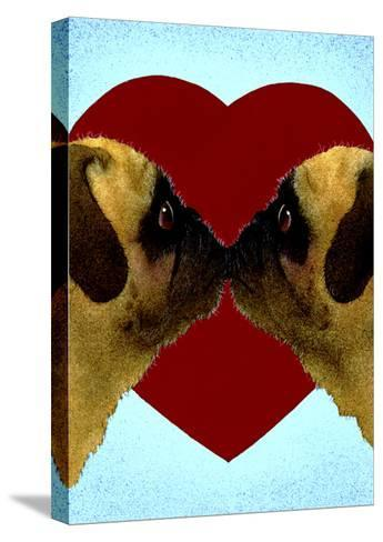 Pugs & Kisses-Will Bullas-Stretched Canvas Print