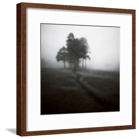 Fog Tree Study 1-Jamie Cook-Framed Art Print