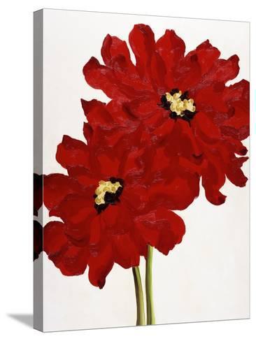 Red Splendor I-Soraya Chemaly-Stretched Canvas Print