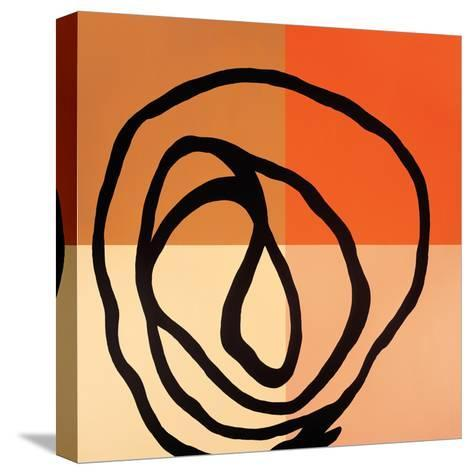 Swirl Pattern III-Gregory Garrett-Stretched Canvas Print