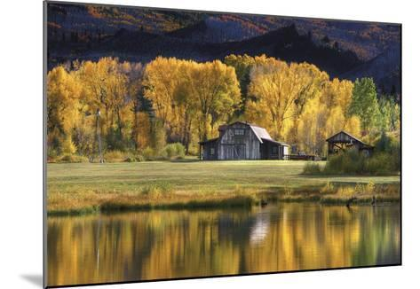 Aspen Trees with Barn-Jamie Cook-Mounted Premium Photographic Print
