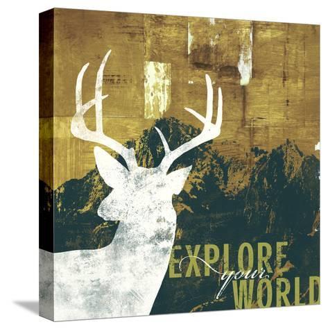 Explore Your World 4-CJ Elliott-Stretched Canvas Print