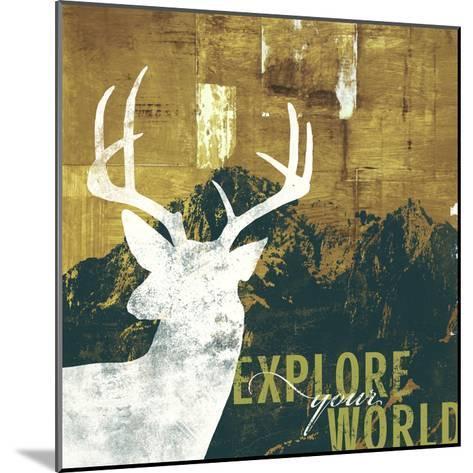 Explore Your World 4-CJ Elliott-Mounted Premium Giclee Print