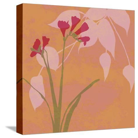 In Bloom I-Kate Knight-Stretched Canvas Print