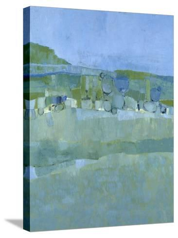 Ice House Pond-Jenny Nelson-Stretched Canvas Print