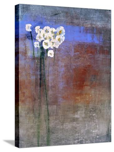 Marguerites 1-Maeve Harris-Stretched Canvas Print