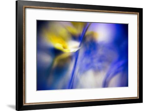 Clere-WTN Photography-Framed Art Print