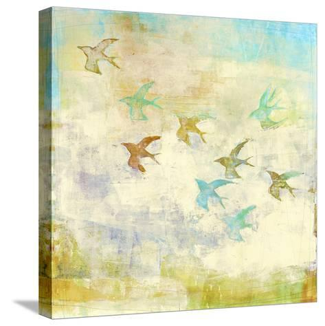 Oiseaux 1-Maeve Harris-Stretched Canvas Print