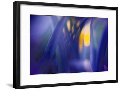 Jangal-WTN Photography-Framed Art Print