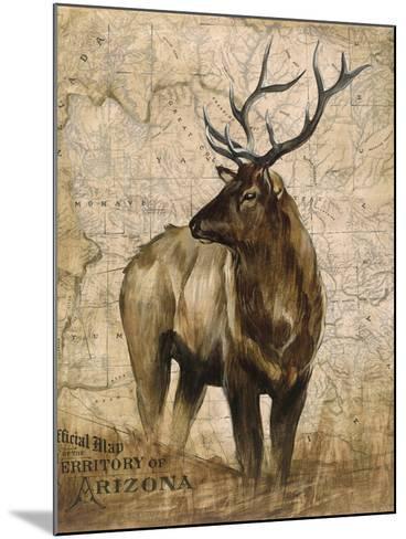 Native Spirit 2-Elizabeth Hope-Mounted Premium Giclee Print