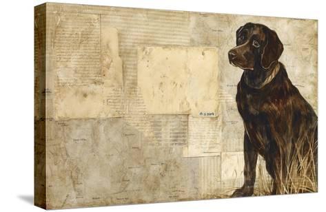 A Dog's Story 4-Elizabeth Hope-Stretched Canvas Print