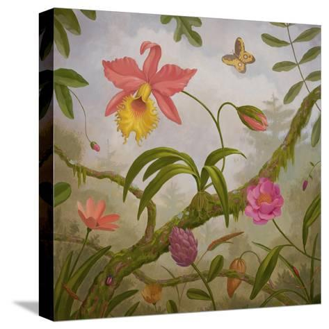 Tropical North-Fred Lisaius-Stretched Canvas Print