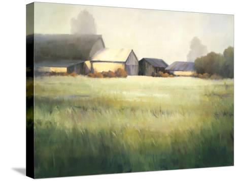 Morning Stillness-David Marty-Stretched Canvas Print
