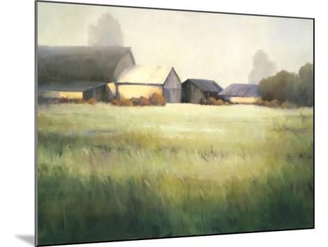 Morning Stillness-David Marty-Mounted Premium Giclee Print