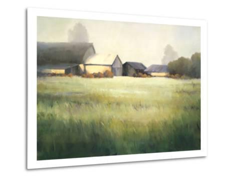 Morning Stillness-David Marty-Metal Print