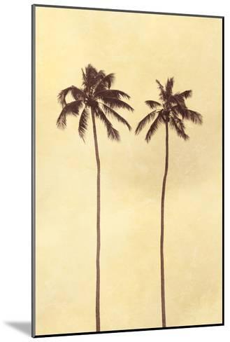 Palm Vista II-Thea Schrack-Mounted Premium Photographic Print