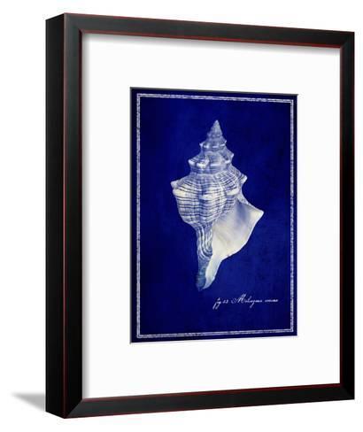 Conch Shell-GI ArtLab-Framed Art Print