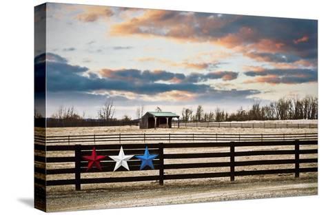 Three Star Farm-Arabella Studios-Stretched Canvas Print