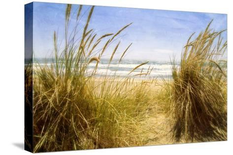 Dune Grass 3-Thea Schrack-Stretched Canvas Print