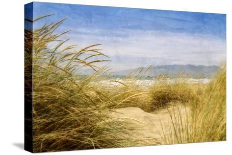 Dune Grass 4-Thea Schrack-Stretched Canvas Print