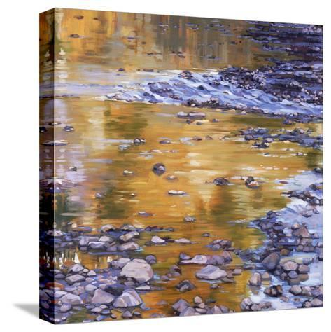 Rocks & Reflection-Sarah Waldron-Stretched Canvas Print