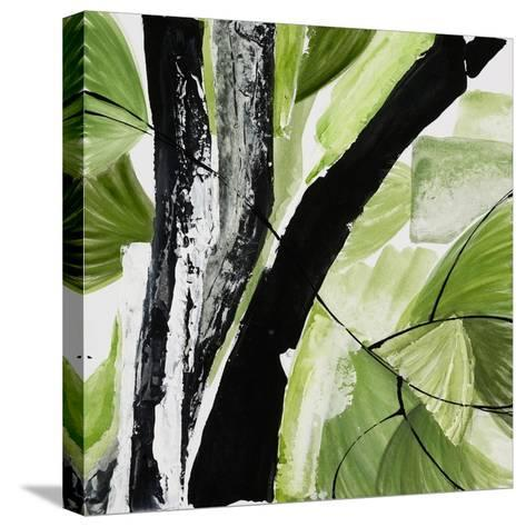 Forest View 4-Chris Paschke-Stretched Canvas Print