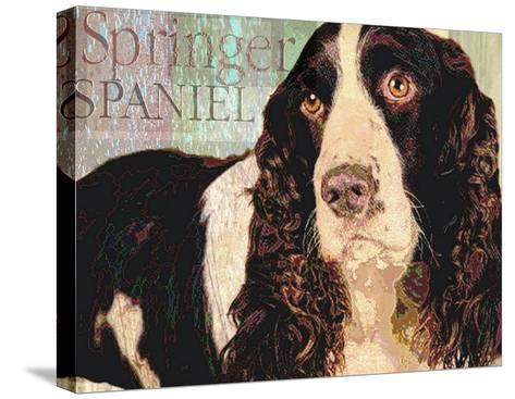 Springer Spaniel-Wendy Presseisen-Stretched Canvas Print