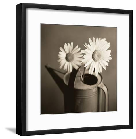Daisies in Can-TM Photography-Framed Art Print