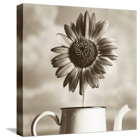 Sunflower Clouds-TM Photography-Stretched Canvas Print