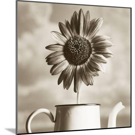 Sunflower Clouds-TM Photography-Mounted Premium Photographic Print