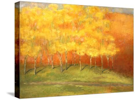 Maple Road- Vasil-Stretched Canvas Print