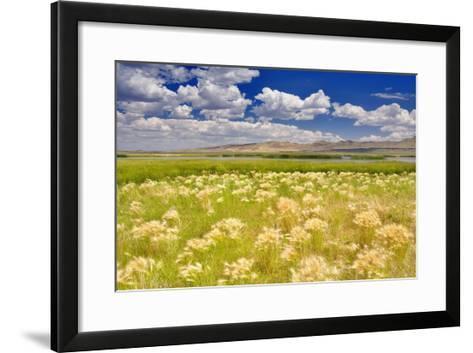 Nature Series 838-PhotoDF-Framed Art Print