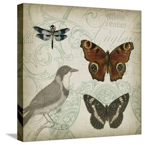 Cartouche and Wings IV-Jennifer Goldberger-Stretched Canvas Print