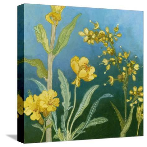 Azure Blooms I-Megan Meagher-Stretched Canvas Print