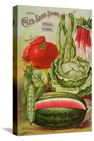 Six Varieties from Cole's Seed Store, Pella, Iowa--Stretched Canvas Print