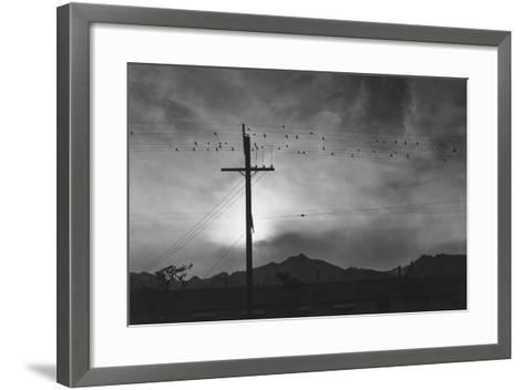 Birds on Wire, Evening, Manzanar Relocation Center', 1943 by Ansel Adams--Framed Art Print