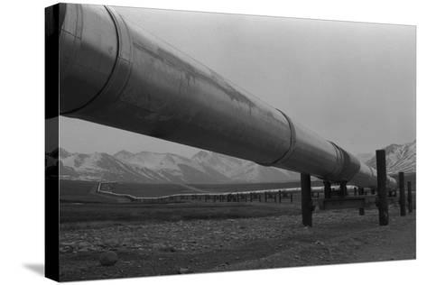 Alaska Pipeline at its Highest Elevation Near Atigun Pass, in Brooks Range, 1977--Stretched Canvas Print
