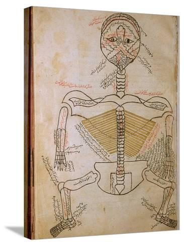 Human Skeleton from Mansur's Anatomy by 15th C. Persian Mansur Ibn Ilyas--Stretched Canvas Print