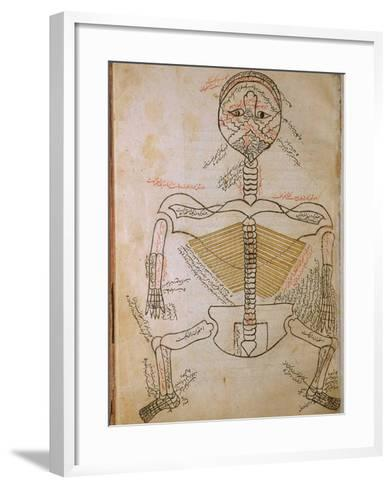 Human Skeleton from Mansur's Anatomy by 15th C. Persian Mansur Ibn Ilyas--Framed Art Print