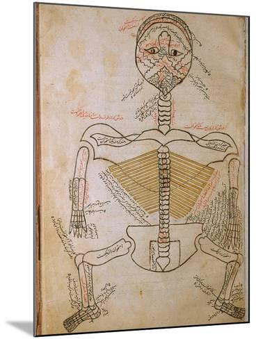 Human Skeleton from Mansur's Anatomy by 15th C. Persian Mansur Ibn Ilyas--Mounted Art Print
