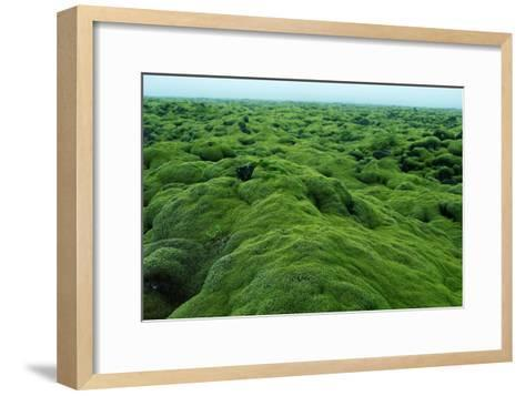 Field of Moss-Howard Ruby-Framed Art Print