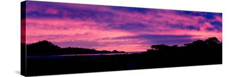 Sunset Silhouette-Howard Ruby-Stretched Canvas Print